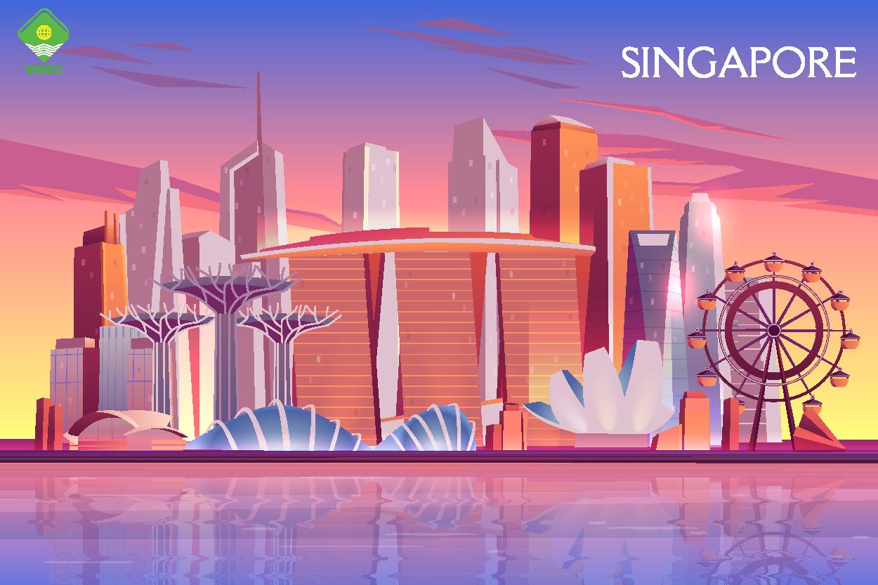 CÙNG KHÁM PHÁ LÍ DO SINGAPORE THU HÚT NHIỀU SINH VIÊN VIỆT NAM ĐẾN THẾ?