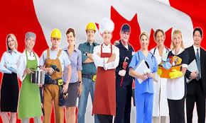 Top 7 Ngành Nghề HOT Nhất Tại tỉnh bang Ontario và British Columbia - Canada