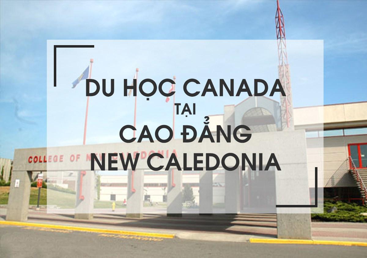 COLLEGE OF NEW CALEDONIA - Một lựa chọn tuyệt vời cho các bạn sinh viên